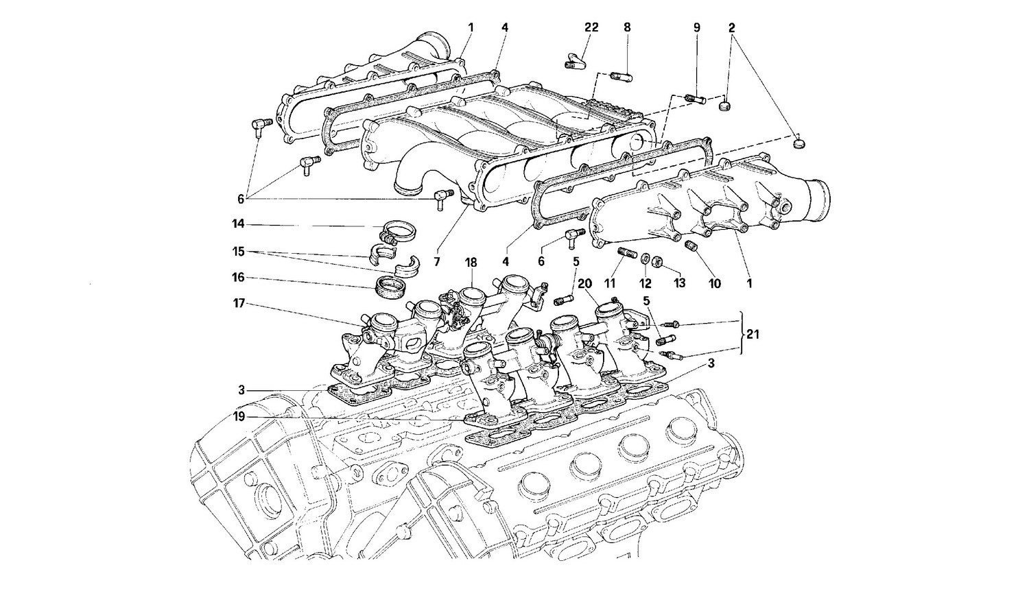 Manifold and throttle bodies